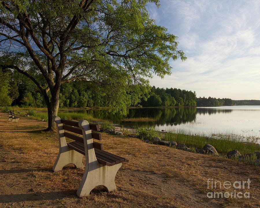 Lake Massabesic Photograph - Lake View by Diana Nault