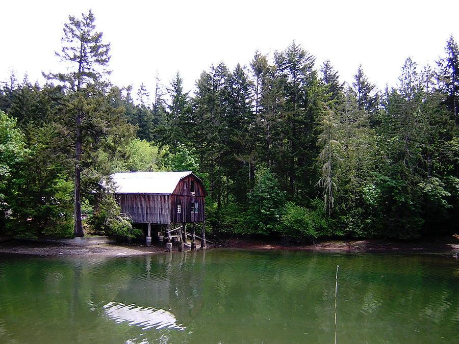 Water Photograph - Lakebay Green Water  by Valerie Josi