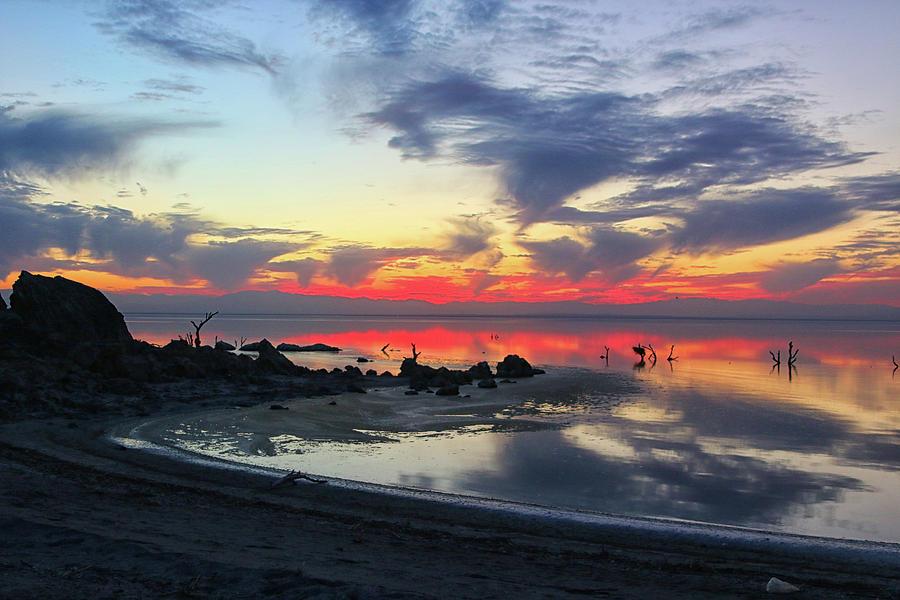 Lakeshore Drive by Mike Trueblood