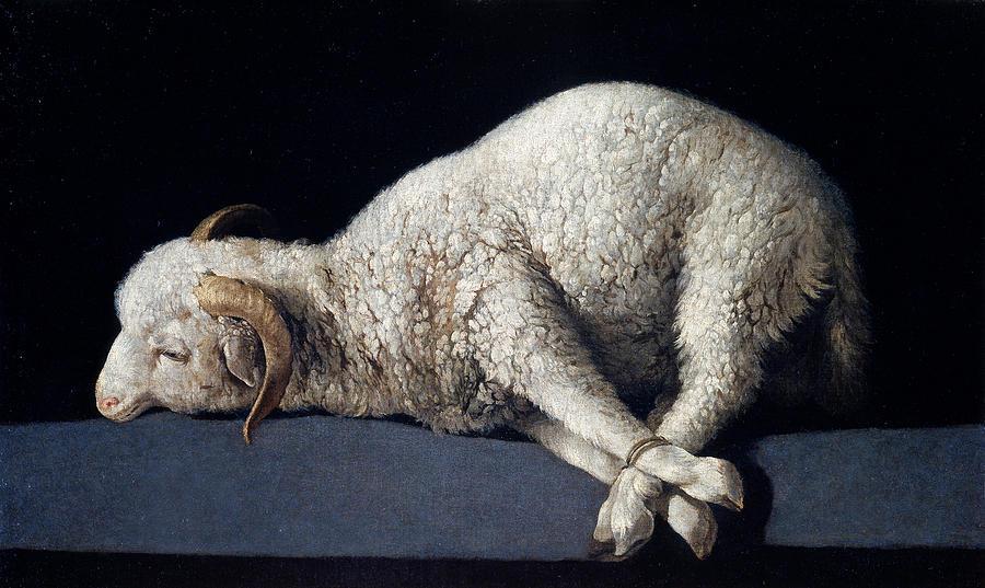 Francisco De Zurbaran Painting - Lamb Of God. Agnus Dei by Francisco de Zurbaran