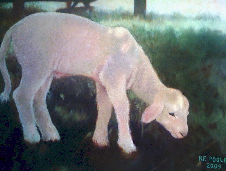 Lamb Painting - Lamb Of God by Rebecca Poole