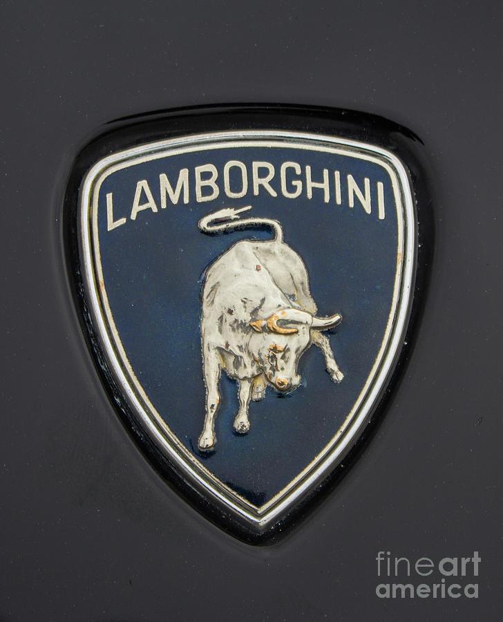 Lamborghini hood emblem