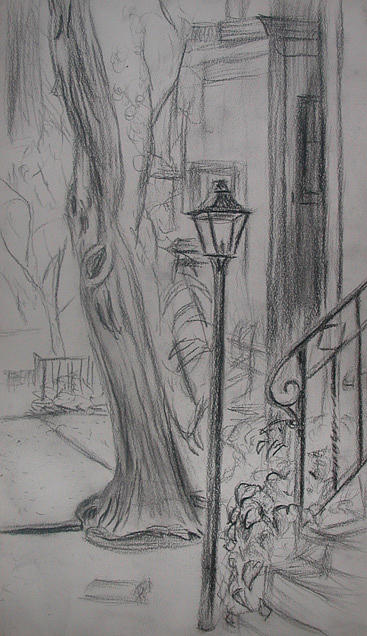 Tree Drawing - Lamp Post by Aimee Johnson