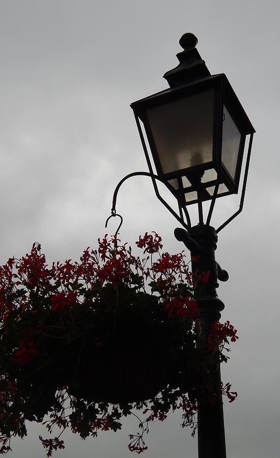 Lamppost Photograph