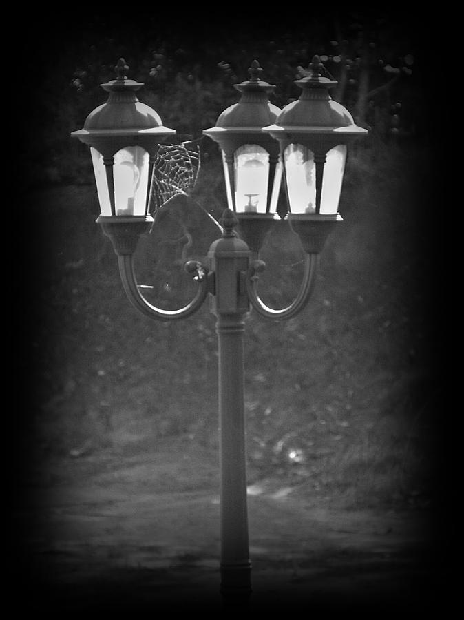Black And White Photograph - Lamppost by Steve Cochran