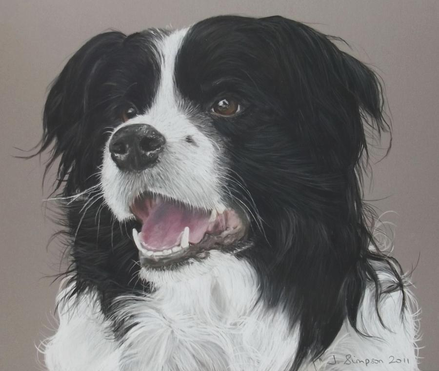 Dog Pastel - Lance by Joanne Simpson