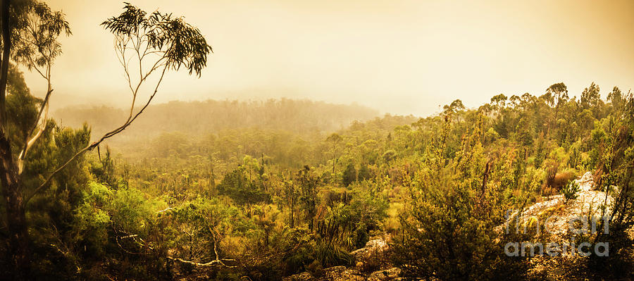 Tasmania Photograph - Land Before Time by Jorgo Photography - Wall Art Gallery