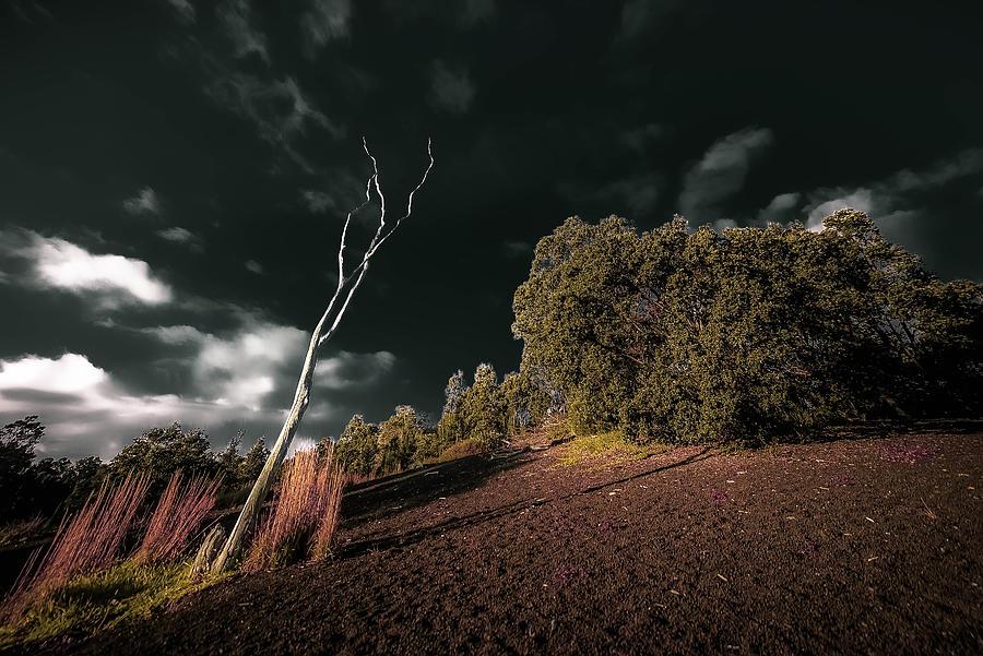 Michelle Saraswati Photograph - Land Of Devastation by Michelle Saraswati