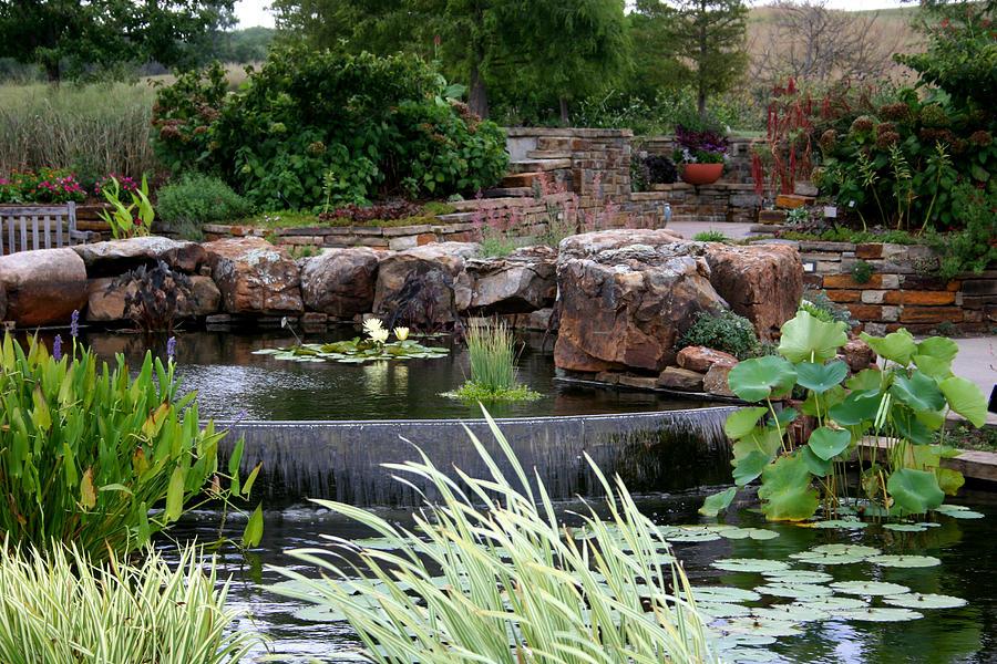 Botanical Photograph - Land Of Enchantment by David Dunham