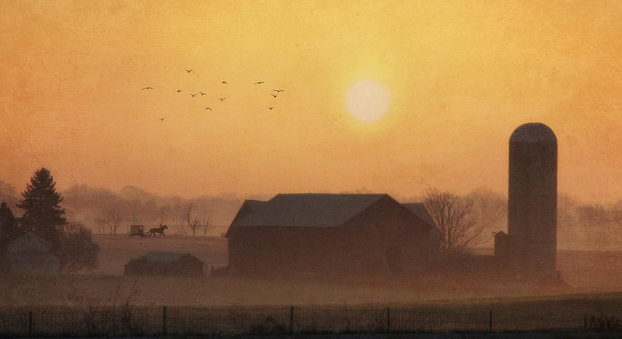 Amish Photograph - Land Of The Amish by Lori Deiter