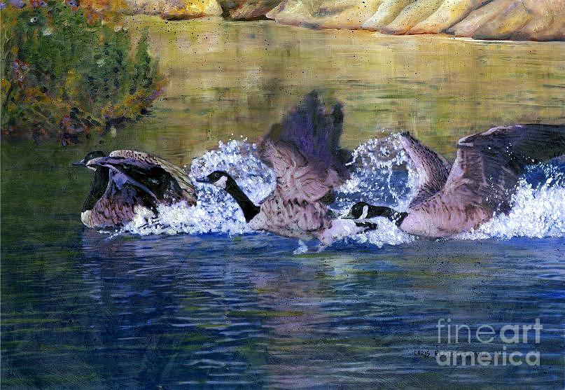 Geese Mixed Media - Landing Geese by Chris Elliott-Davis
