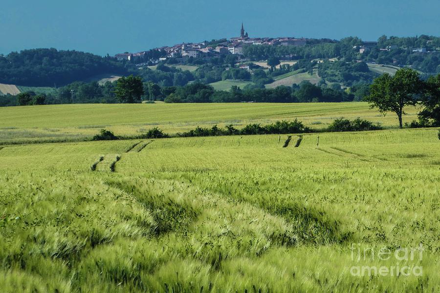 Landscape 8 by Jean Bernard Roussilhe