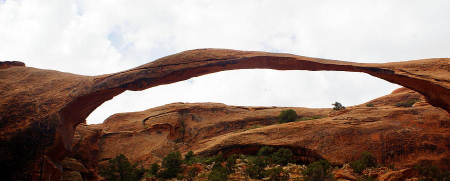Arches National Park 2009 Photograph - Landscape Arch 1 by Marty Koch