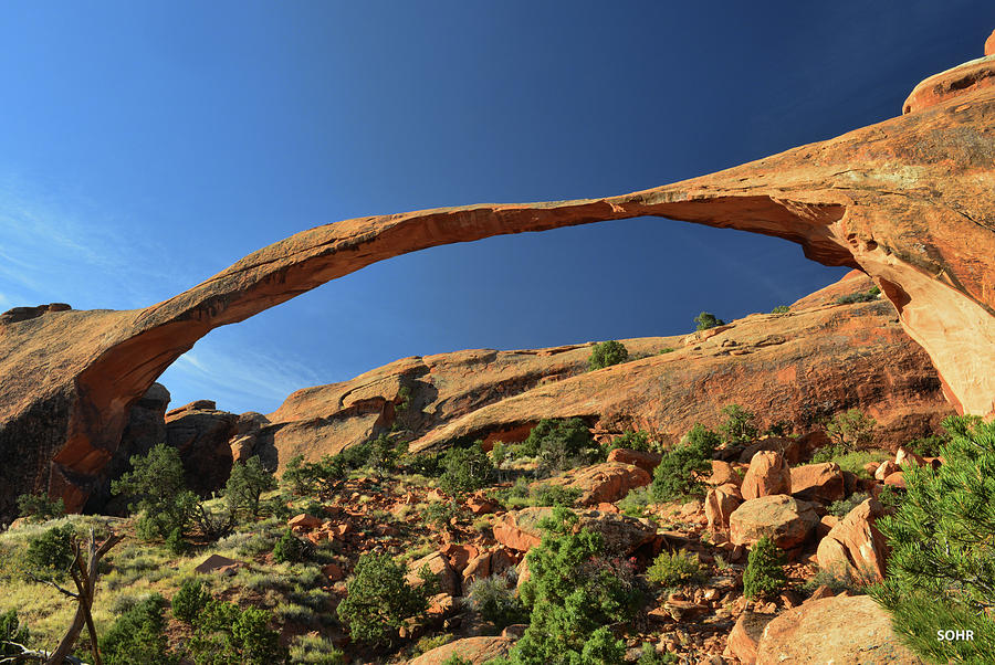 Landscape Arch by Dana Sohr