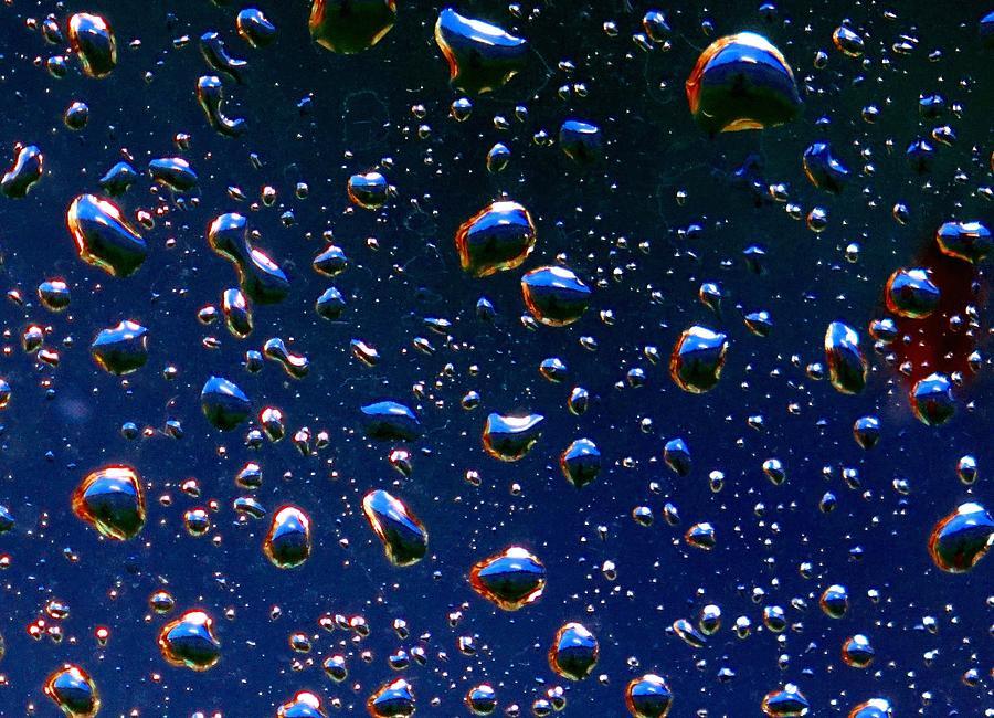 Rain Photograph - Landscape Bubbles by Marianne Dow