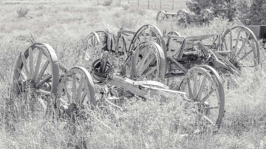 Wagon Photograph - Landscape Galisteo Nm A10t by Otri Park