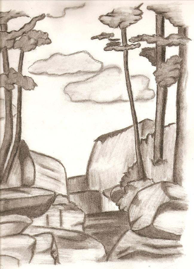 Trees Drawing - Landscape by Michelle Kinzler