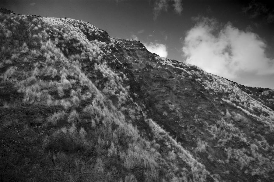 Mountain Photograph - Landscape by Wes Shinn