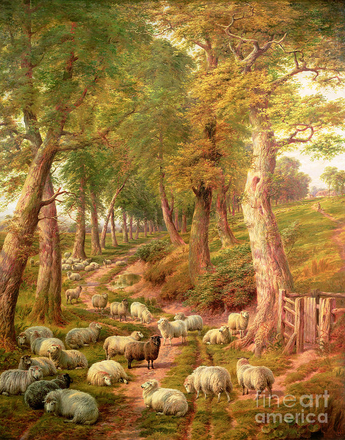 Landscapes Painting - Landscape with Sheep by Charles Jones