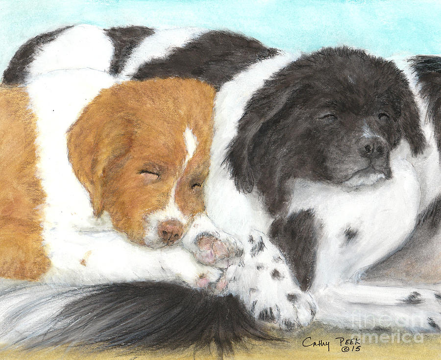Landseer Newfoundland Puppies Napping Painting By Cathy Peek