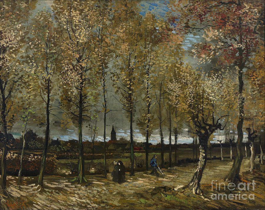 Vicent Painting - Lane With Poplars by Van Gogh