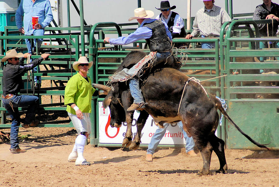 Bull Riders Photograph - Language Between Rider And Clown by Cheryl Poland