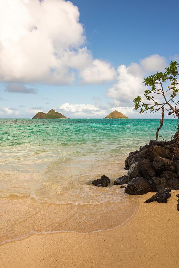 Tropic Photograph - Lanikai Beach 1 - Oahu Hawaii by Brian Harig