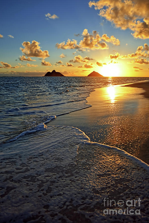 Lanikai Beach Sunrise Foamy Waves