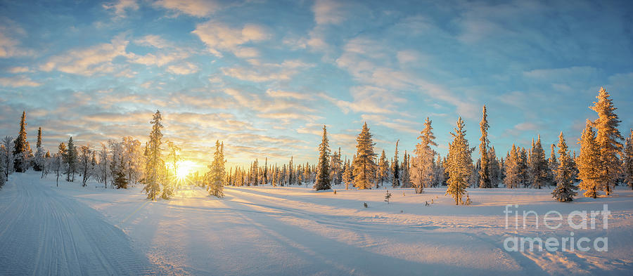 Winter Photograph - Lapland Panorama by Delphimages Photo Creations