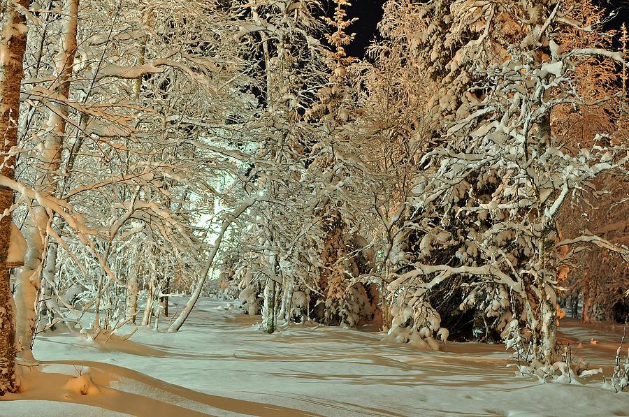 Landscape Photograph - Laplandia by Boris Shekhirev