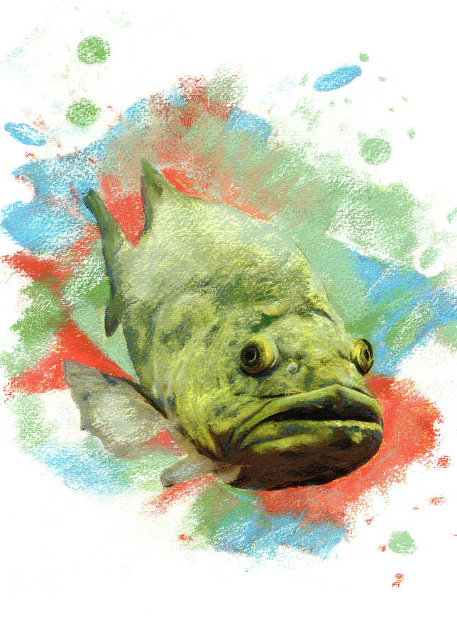Large Mouth Bass Pastel - Large Mouth Bass by Janice Lawrence