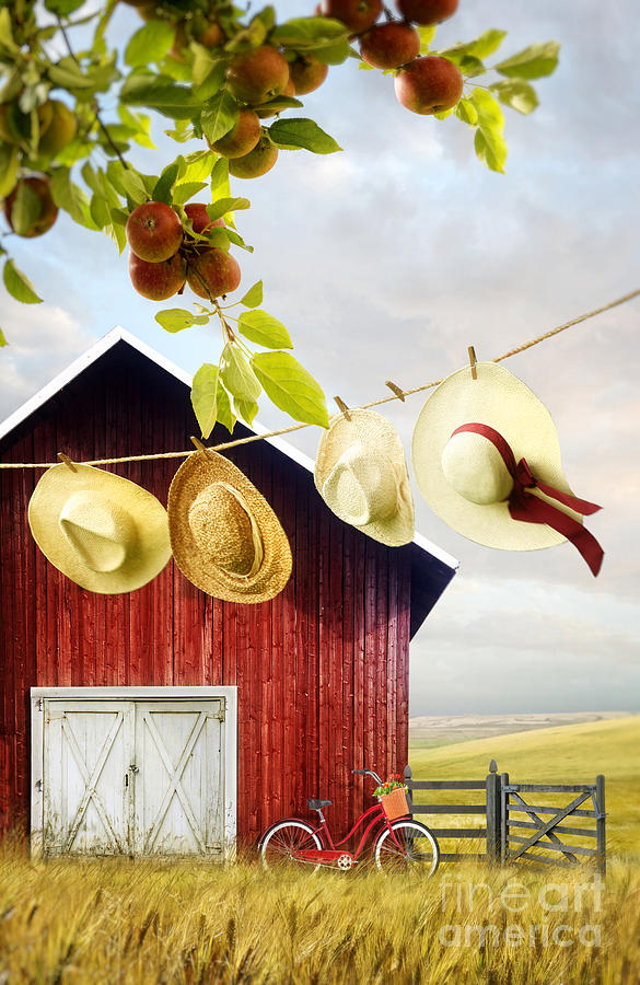 Atmosphere Photograph - Large Red Barn With Hats On Clothesline In Field Of Wheat by Sandra Cunningham