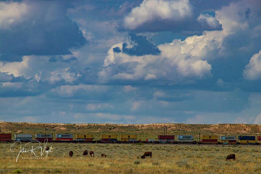 Cows Photograph - Las Vacas Y El Tren by John Vigil