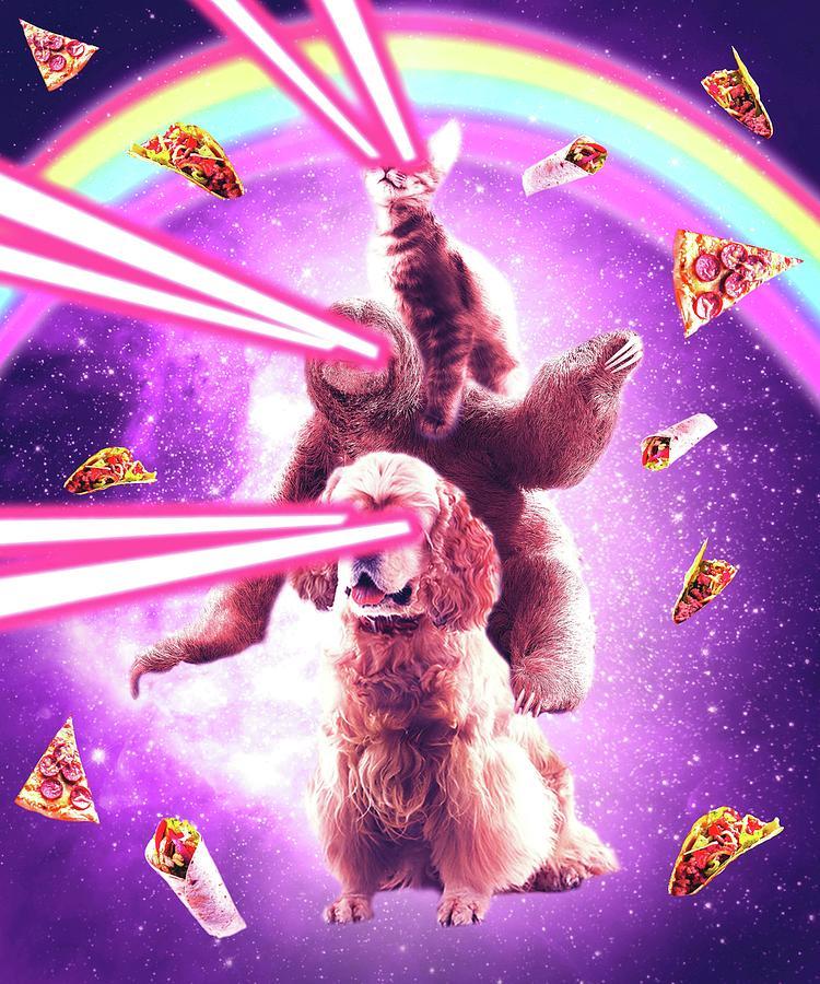 Cat Digital Art - Laser Eyes Space Cat Riding Sloth, Dog - Rainbow by Random Galaxy