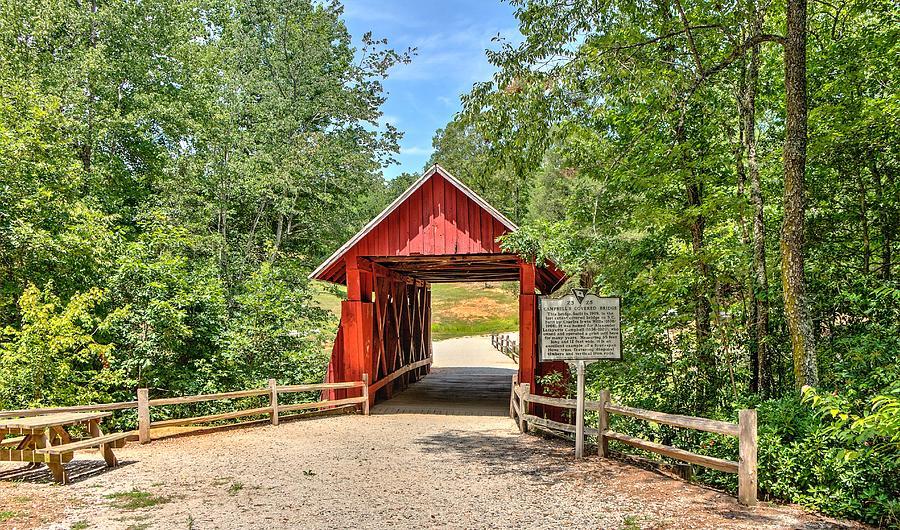 Last Bridge by Ree Reid