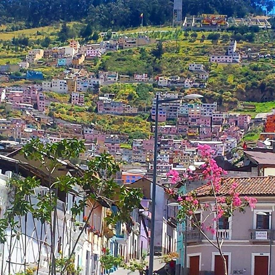 Travel Photograph - Last Day In #quito Today Before Heading by Dante Harker