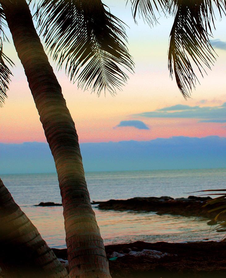 Key West Photograph - Last Evening Lights by Susanne Van Hulst