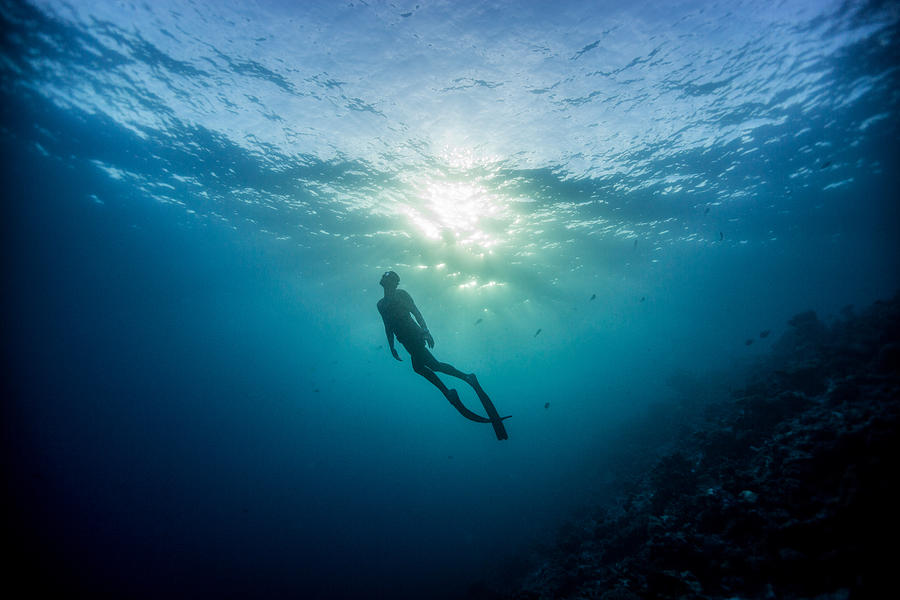 Freediving Photograph - Last Light by One ocean One breath