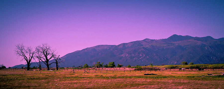 Taos Photograph - Late Afternoon In Taos by David Patterson