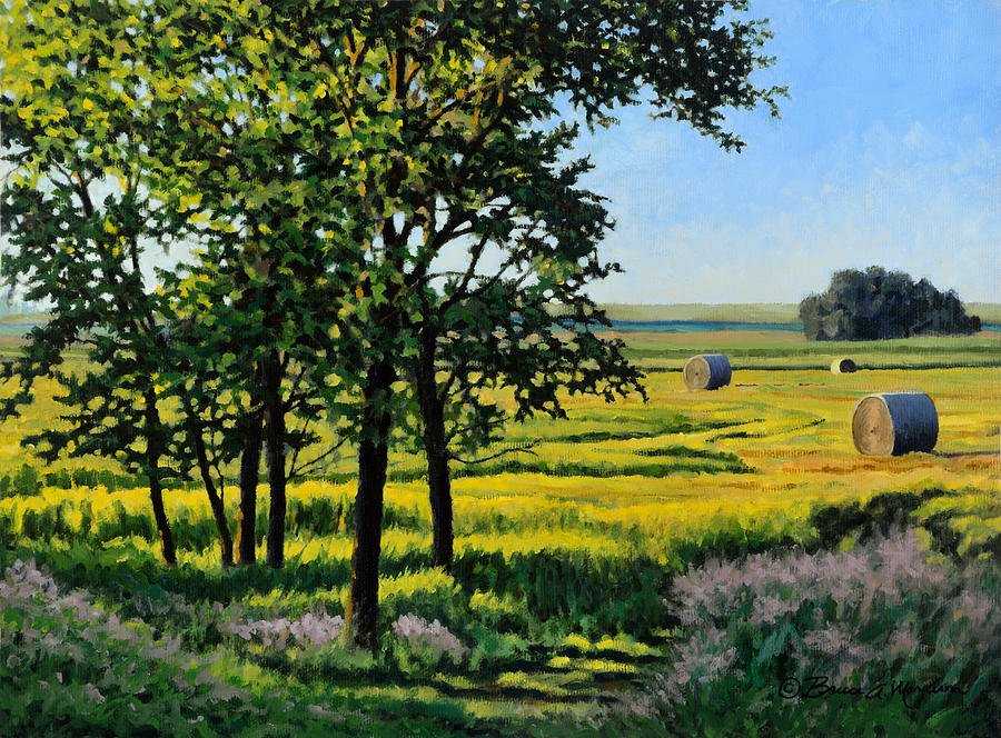 Late Afternoon Pasture by Bruce Morrison