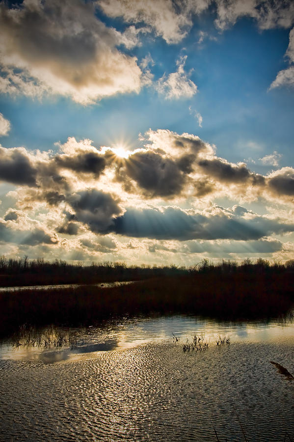 River Photograph - Late Evening By The River by Michel Filion