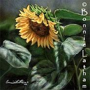 Miniature Painting - Late Summers Gold - Sunflower by Bonnie Latham