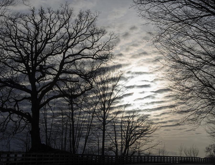 Winter Photograph - Late Winter Afternoon by Kurt Shaffer