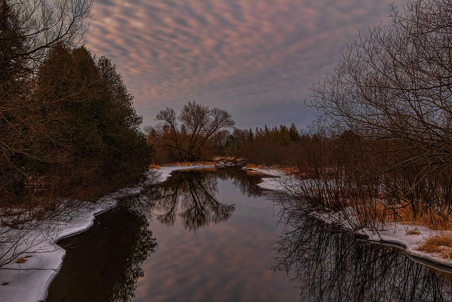 Late Winter On The Plover River by Dale Kauzlaric