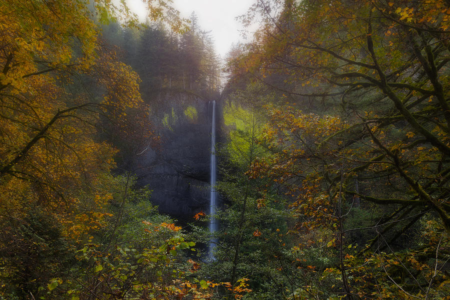 Latourell Falls Photograph - Latourell Falls In Autumn by David Gn