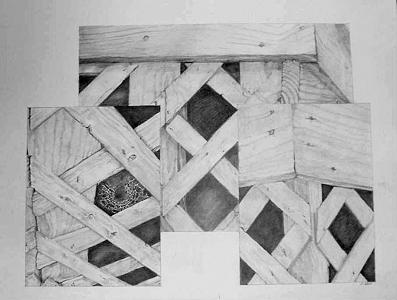 Spider Web Drawing - Lattice And Spider Triptych by Ladonna Idell