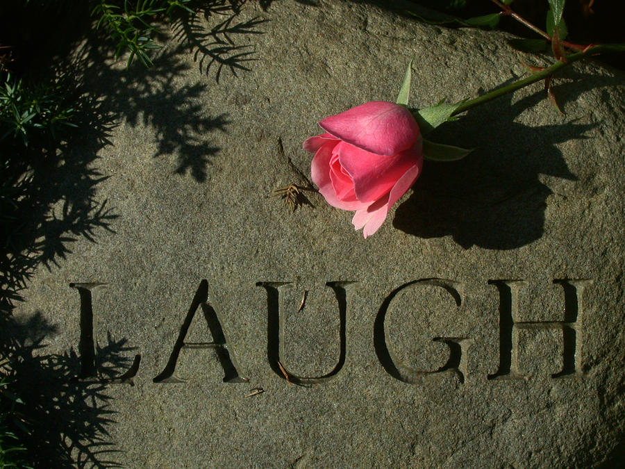 Laugh by Philip Clift