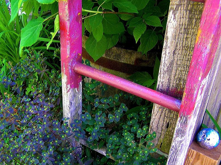 Garden Ladder Photograph - Lauras Ladder by Jen White