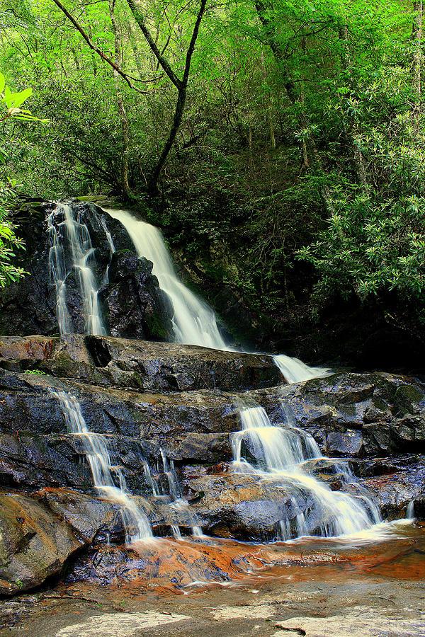 Nature Photograph - Laurel Falls by Jason Blalock