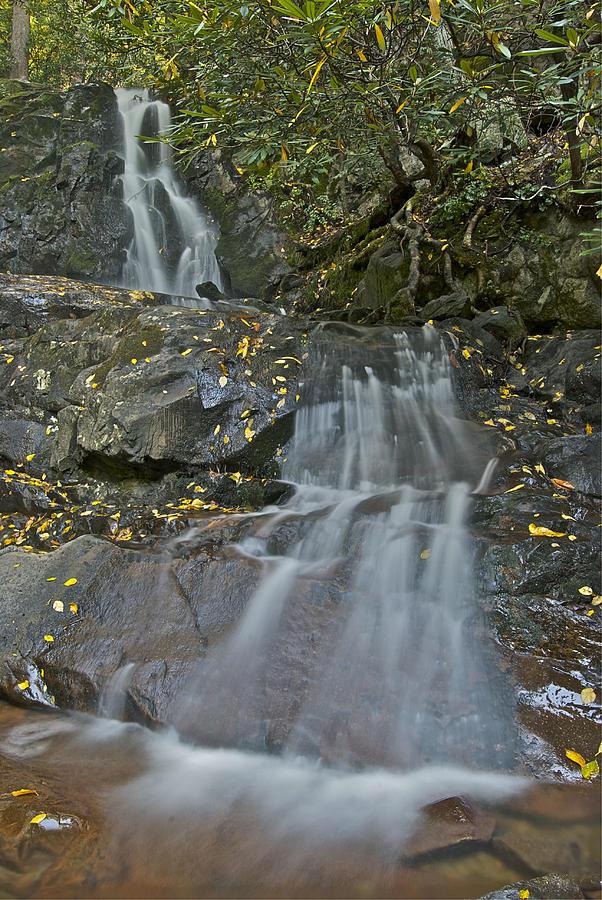 Laurel Falls Photograph - Laurel Falls by Michael Peychich